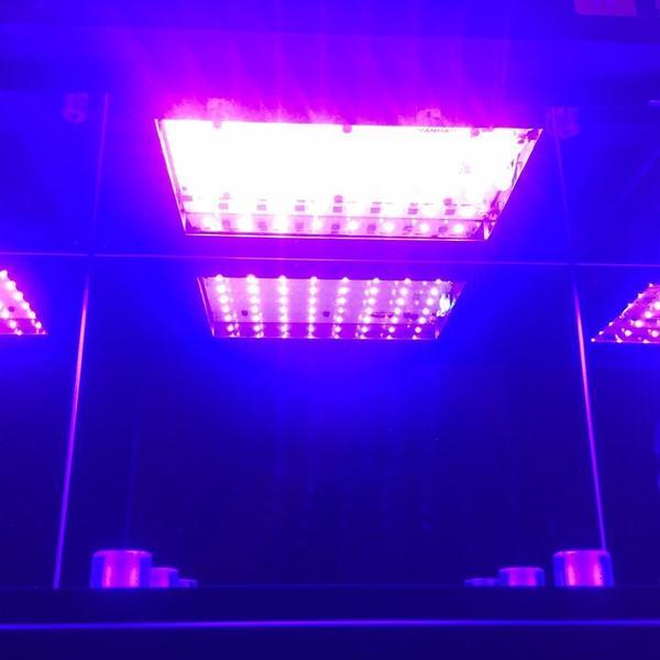 лампы внутри устройства