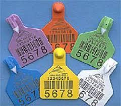 штрих коды на ярлычках